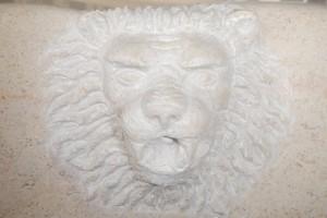 Détail gargouille tête de Lion