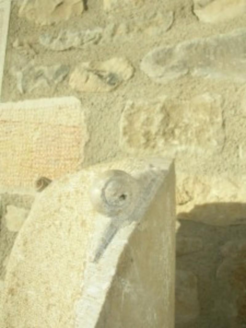 Détail d'un escargot sculpté